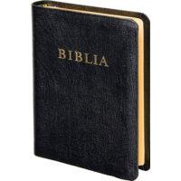 Biblia – revideált új fordítás (RÚF), bőrkötés, aranymetszés, közepes
