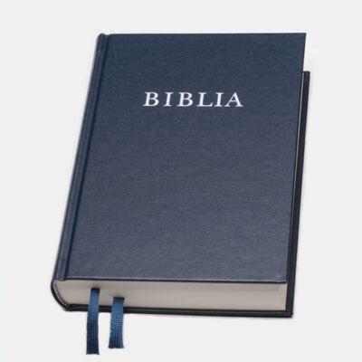 Biblia – revideált új fordítás, konkordanciával, vászonkötés, nagy