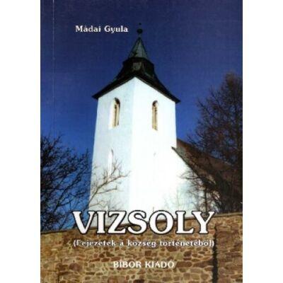 Vizsoly: fejezetek a község történetéből